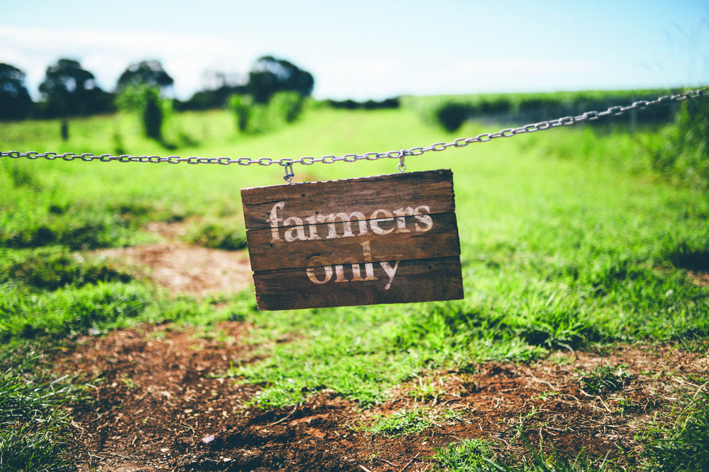 The Farm sub-lets land to other local farmers, providing greater diversity of produce.